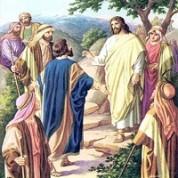 Неделя 30-ая по Пятидесятнице — об уповании на богатство.